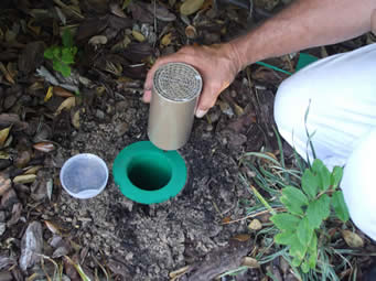 Truth Termite Baiting System